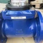 Đồng hồ đo lưu lượng nước DN 250 Minox - Maxlai