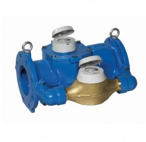 Đồng hồ nước Itron Isoflo 60/65x20